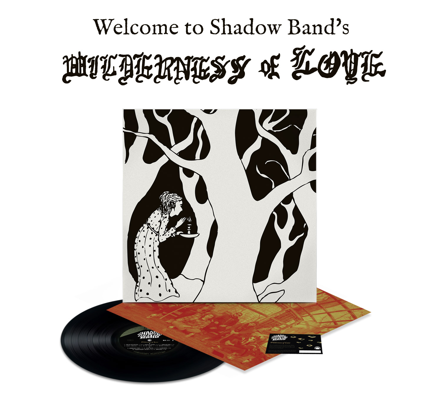 Shadow Band Wilderness of Love LP