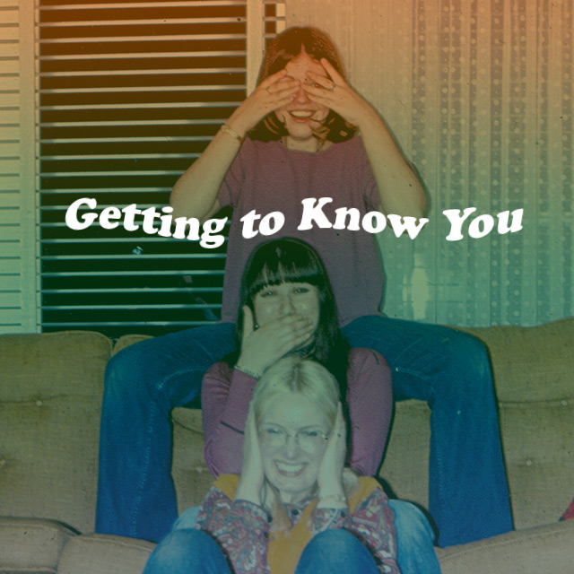 Getting To Know You: Ariel Pink Spotify Playlist