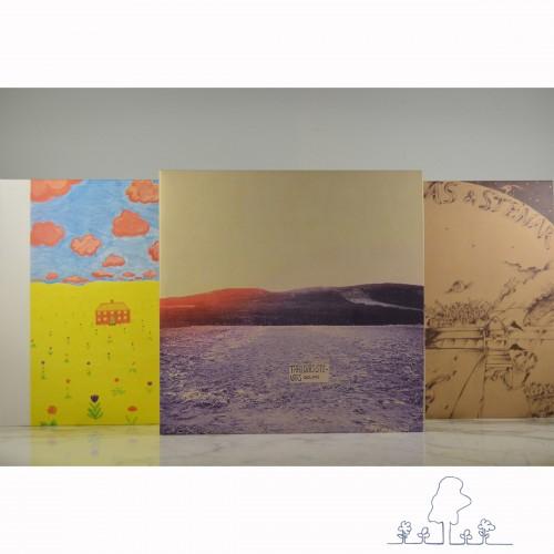 Träd, Gräs och Stenar-box-set-LP-s