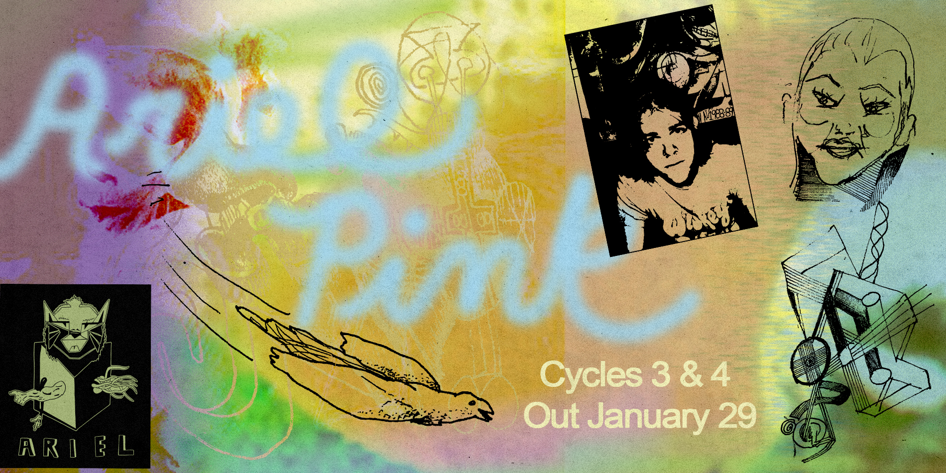 Ariel Pink Archive Site Banner