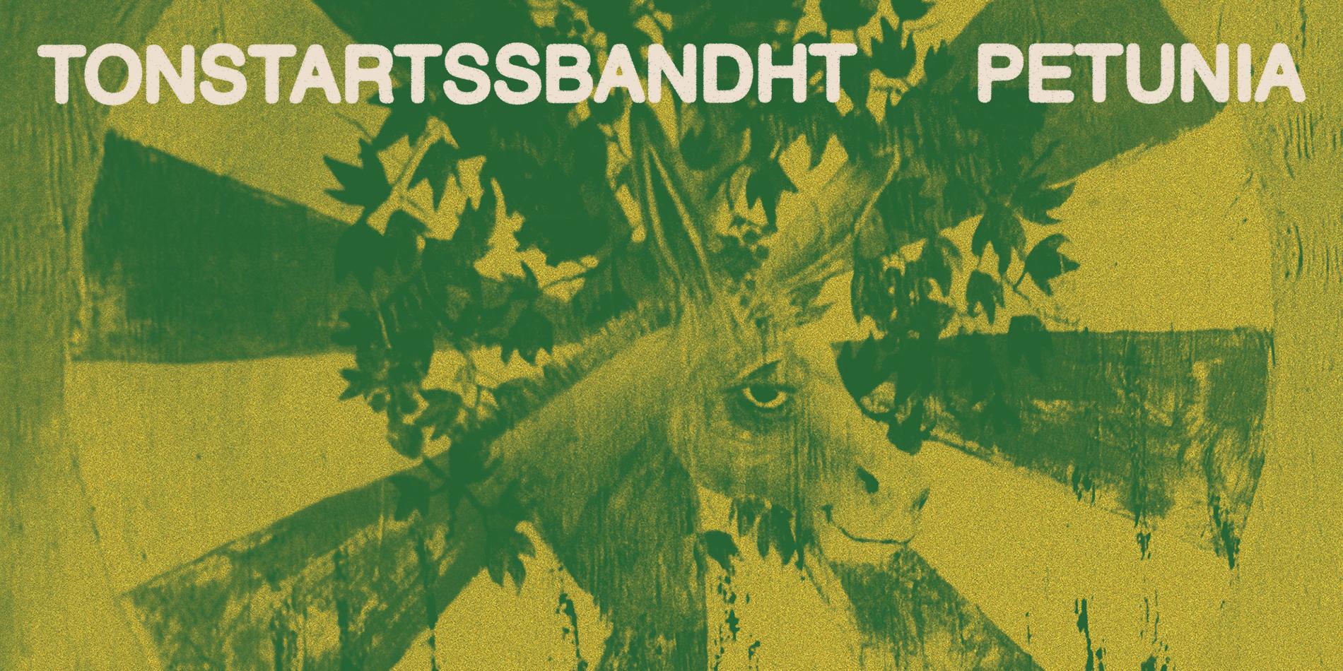 Tonstartssbandht Petunia Site Banner